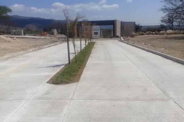Foto de terreno habitacional en venta en 1a oriente norte , santa cecilia, berrioz?bal, chiapas, 3155361 No. 05