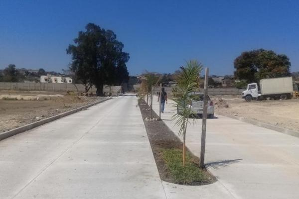 Foto de terreno habitacional en venta en 1a oriente norte , santa cecilia, berrioz?bal, chiapas, 3155361 No. 07