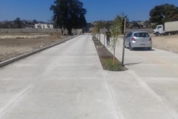 Foto de terreno habitacional en venta en 1a oriente norte , santa cecilia, berrioz?bal, chiapas, 3155361 No. 08