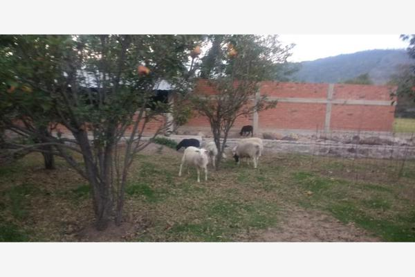 Foto de rancho en venta en 2° privada de morelos , huimilpan centro, huimilpan, querétaro, 7197642 No. 07