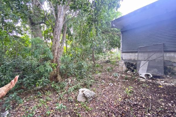 Foto de terreno habitacional en venta en 2 2, puerto morelos, benito juárez, quintana roo, 5309390 No. 07