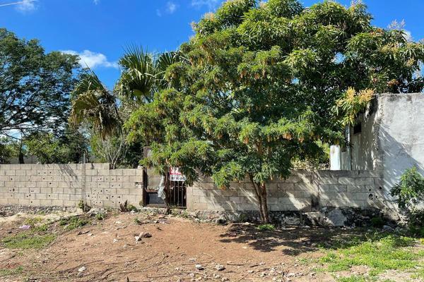 Foto de terreno habitacional en venta en 20 , izamal, izamal, yucatán, 0 No. 05