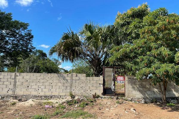 Foto de terreno habitacional en venta en 20 , izamal, izamal, yucatán, 0 No. 06