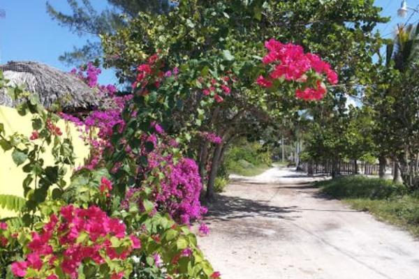 Foto de casa en venta en 23 , san crisanto, sinanché, yucatán, 6127431 No. 06