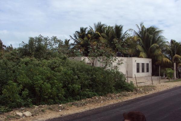 Foto de terreno habitacional en venta en 27 , telchac puerto, telchac puerto, yucatán, 3431296 No. 04