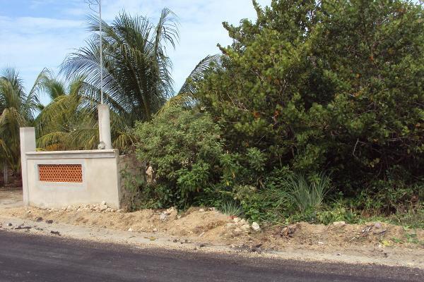 Foto de terreno habitacional en venta en 27 , telchac puerto, telchac puerto, yucatán, 3431296 No. 08
