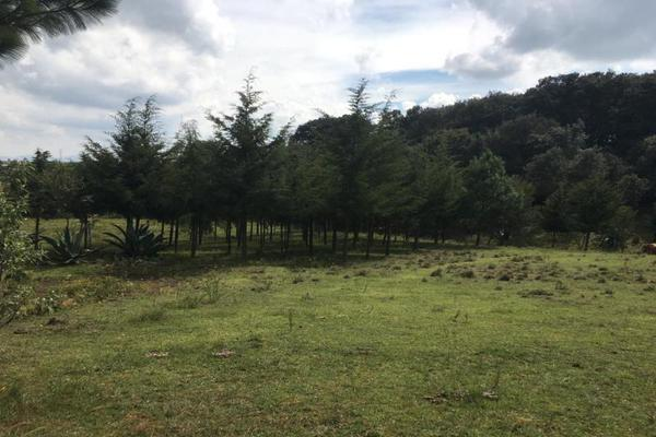 Foto de terreno habitacional en venta en 2da manzana 0, san lorenzo nenamicoyan, jilotepec, méxico, 5929930 No. 05