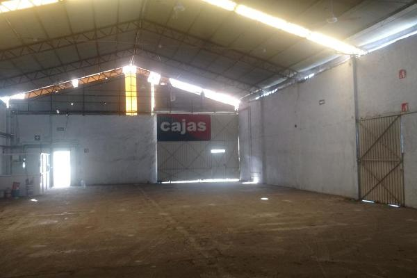 Foto de nave industrial en venta en  , 3 de mayo, emiliano zapata, morelos, 5875609 No. 04