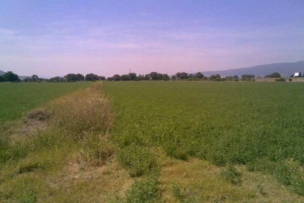 Foto de terreno habitacional en venta en  , 3 guerras, celaya, guanajuato, 2734887 No. 05