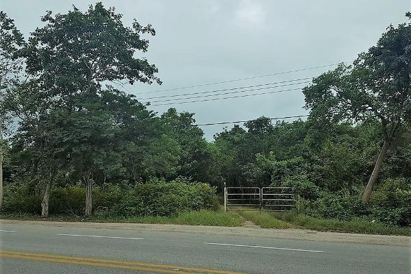 Foto de rancho en renta en 33 , sucila, sucilá, yucatán, 14027886 No. 03