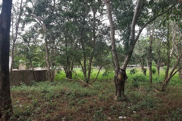 Foto de terreno habitacional en renta en 33 , sucila, sucilá, yucatán, 14027890 No. 03