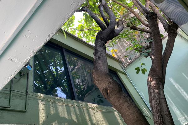 Foto de casa en venta en 3ra cerrada de las peñas 77 , xalpa, iztapalapa, df / cdmx, 20809544 No. 05