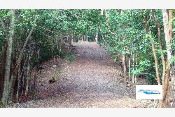 Foto de terreno comercial en venta en costera 4, bacalar, bacalar, quintana roo, 2673017 No. 02