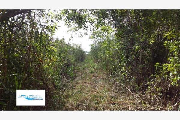 Foto de terreno comercial en venta en costera 4, bacalar, bacalar, quintana roo, 2673017 No. 12