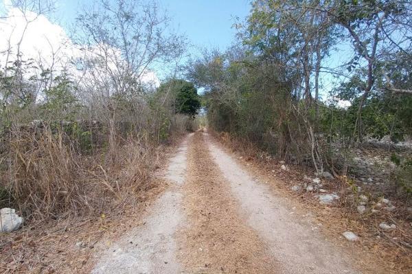 Foto de terreno habitacional en venta en  , telchac puerto, telchac puerto, yucatán, 5940737 No. 02