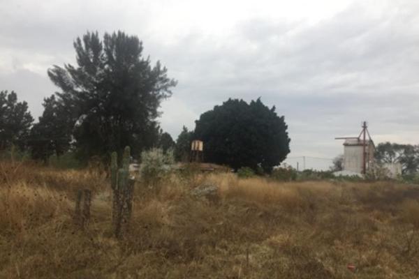 Foto de terreno habitacional en venta en 5 de mayo sur ., real de santa anita, san pedro tlaquepaque, jalisco, 4656680 No. 04