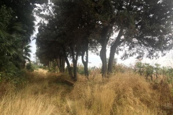 Foto de terreno habitacional en venta en 5 de mayo sur ., real de santa anita, san pedro tlaquepaque, jalisco, 4656680 No. 07