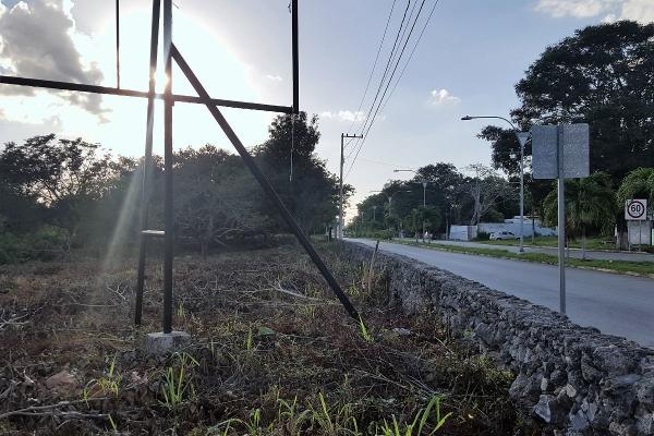 Foto de terreno comercial en renta en 51 , tizimin centro, tizimín, yucatán, 14028359 No. 03