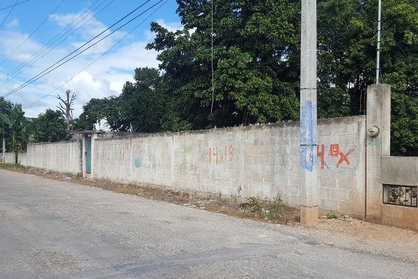 Foto de terreno comercial en renta en 52 , santa cruz, tizimín, yucatán, 14028484 No. 01