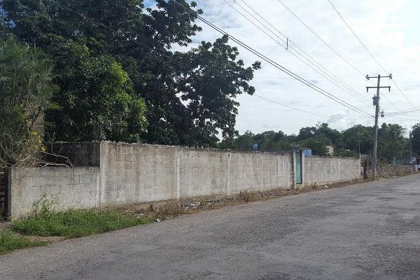 Foto de terreno comercial en renta en 52 , santa cruz, tizimín, yucatán, 14028484 No. 02