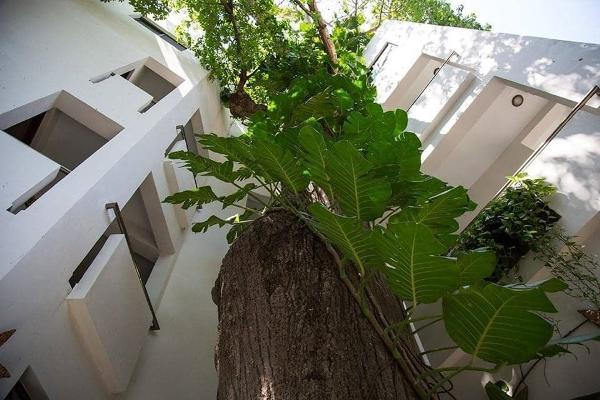 Foto de edificio en venta en 5ta avenida , playa del carmen centro, solidaridad, quintana roo, 12270833 No. 01