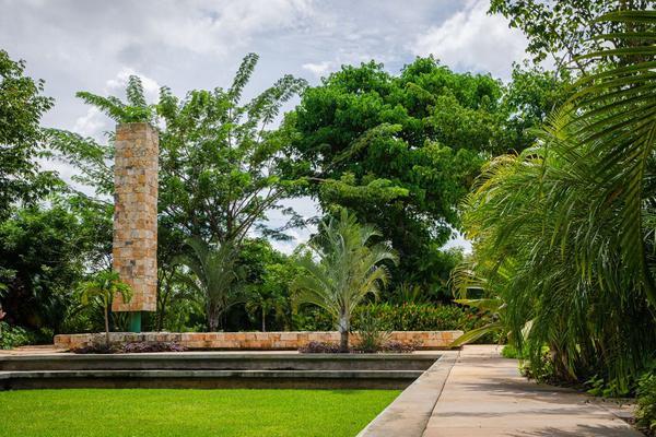 Foto de terreno habitacional en venta en 6 5, santa gertrudis copo, mérida, yucatán, 0 No. 03