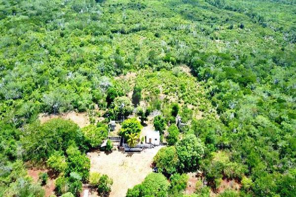Foto de terreno comercial en venta en 99 , hocaba, hocabá, yucatán, 9184998 No. 01