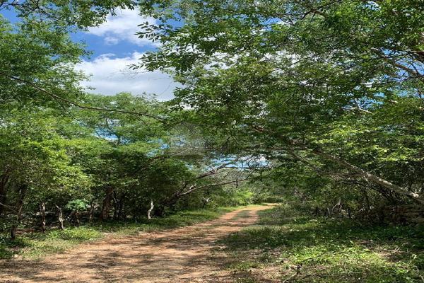 Foto de terreno comercial en venta en 99 , hocaba, hocabá, yucatán, 9184998 No. 03