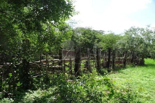 Foto de terreno comercial en venta en 99 , hocaba, hocabá, yucatán, 9184998 No. 04