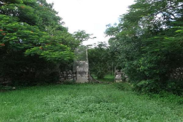 Foto de terreno comercial en venta en 99 , hocaba, hocabá, yucatán, 9184998 No. 05