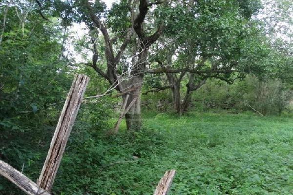 Foto de terreno comercial en venta en 99 , hocaba, hocabá, yucatán, 9184998 No. 09