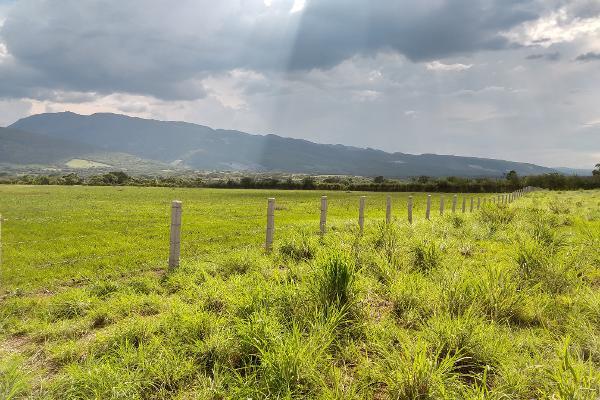 Foto de terreno industrial en venta en a pacú , terán, tuxtla gutiérrez, chiapas, 8039477 No. 03