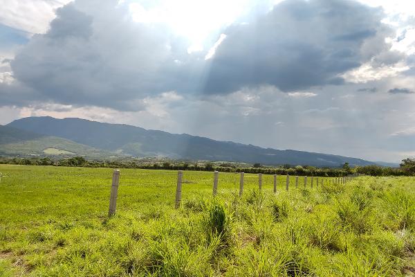 Foto de terreno industrial en venta en a pacú , terán, tuxtla gutiérrez, chiapas, 8039477 No. 04