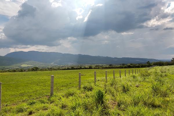 Foto de terreno industrial en venta en a pacú , terán, tuxtla gutiérrez, chiapas, 8039477 No. 06