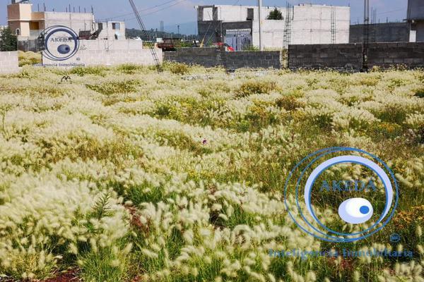 Foto de terreno habitacional en venta en a unos metros de deloxxo puente de piedra con todos los servic, tizayuca, tizayuca, hidalgo, 10095484 No. 03