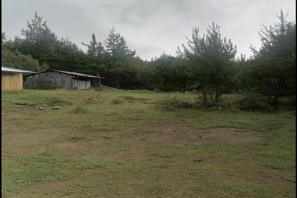 Foto de terreno habitacional en venta en  , acajete, acajete, puebla, 0 No. 07