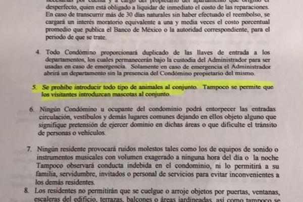 Foto de departamento en renta en  , acapulco de juárez centro, acapulco de juárez, guerrero, 7278288 No. 43