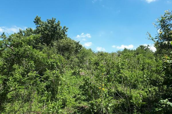 Foto de terreno habitacional en venta en  , acatlan de juárez, acatlán de juárez, jalisco, 4633768 No. 05