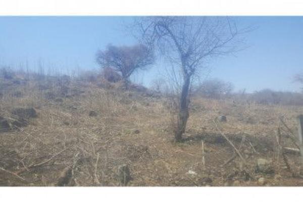 Foto de terreno habitacional en venta en  , acatlan de juárez, acatlán de juárez, jalisco, 5973967 No. 01