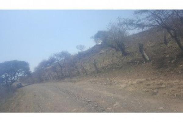 Foto de terreno habitacional en venta en  , acatlan de juárez, acatlán de juárez, jalisco, 5973967 No. 04