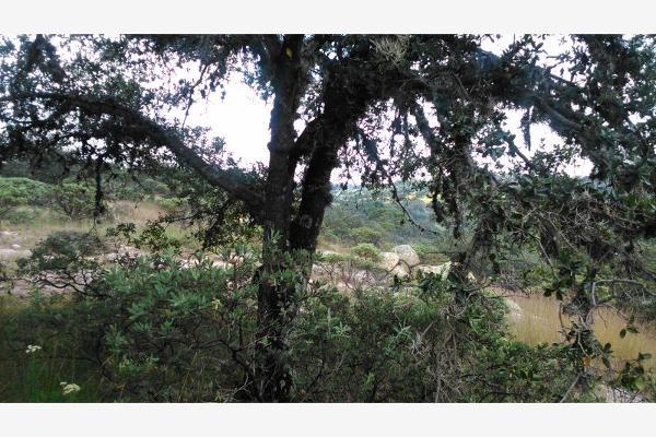 Foto de terreno habitacional en venta en  , aculco de espinoza, aculco, méxico, 3028972 No. 09