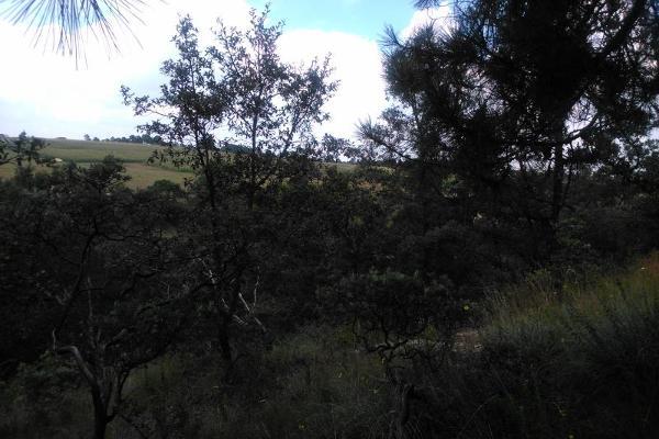Foto de terreno habitacional en venta en  , aculco de espinoza, aculco, méxico, 3028972 No. 16