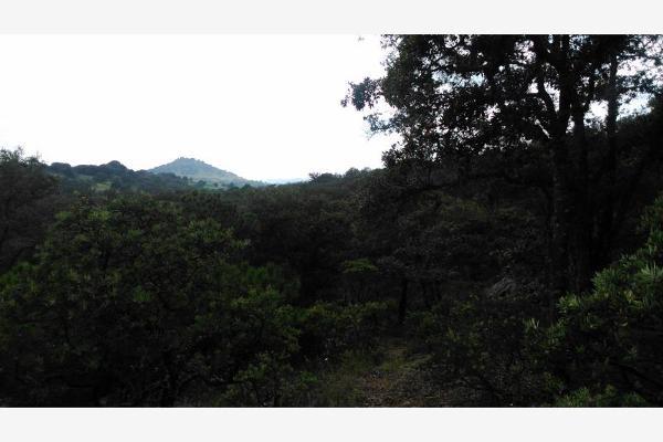 Foto de terreno habitacional en venta en  , aculco de espinoza, aculco, méxico, 3028972 No. 18