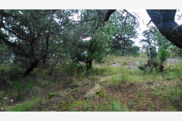 Foto de terreno habitacional en venta en  , aculco de espinoza, aculco, méxico, 3028972 No. 28