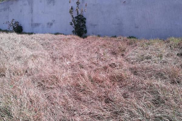 Foto de terreno habitacional en venta en adolfo lopez mateos 11, ocotlán, tlaxcala, tlaxcala, 5353698 No. 05