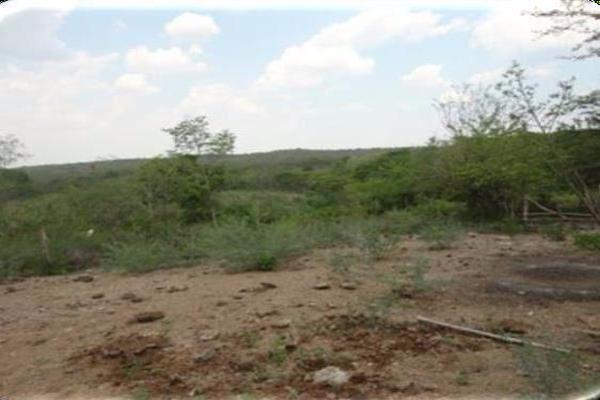Foto de terreno habitacional en venta en  , agua dulce, acala, chiapas, 7144535 No. 02