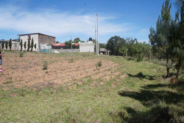 Foto de terreno industrial en venta en agua escondida 64, calapa, chignahuapan, puebla, 5891448 No. 05