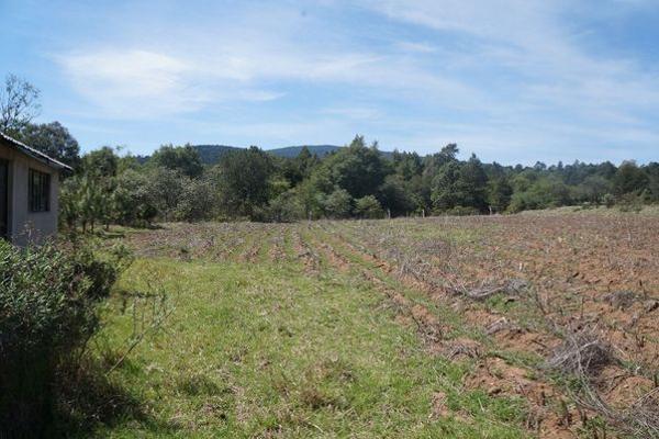 Foto de terreno industrial en venta en agua escondida 64, calapa, chignahuapan, puebla, 5891448 No. 06