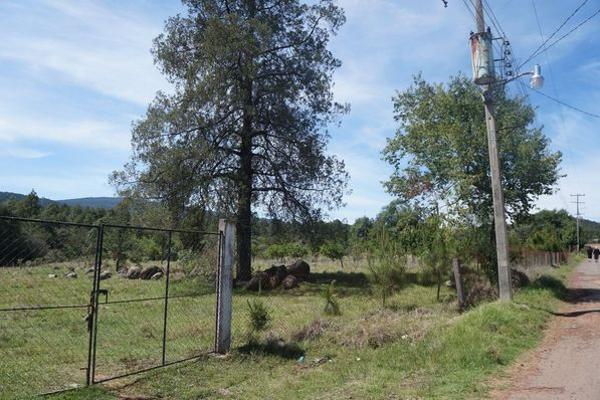 Foto de terreno industrial en venta en agua escondida 64, calapa, chignahuapan, puebla, 5891448 No. 08