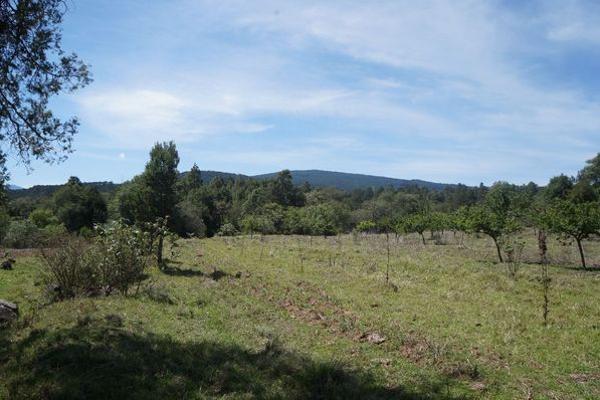 Foto de terreno industrial en venta en agua escondida 64, calapa, chignahuapan, puebla, 5891448 No. 10